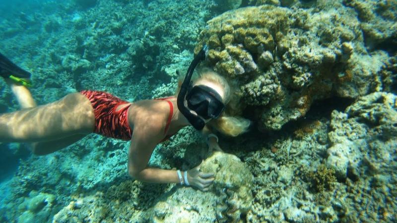 Freediving Maldives Indian ocean 4K