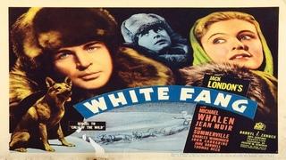 White Fang 🐾 starring Michael Whalen, Jean Muir, Slim Summerville, Charles Winninger, John Carradine and Jane Darwell!