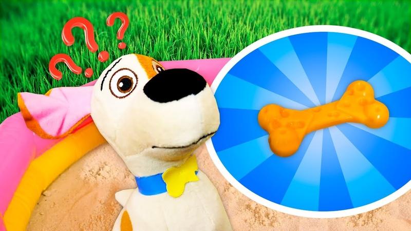 Vamos ajudar o Max a achar seu osso Brincadeiras educativas em português para crianças