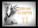 Chin Na in Depth 3 3 Course 11 Chinese Kung Fu Grappling Lessons