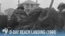 D-Day: First Hand Footage of Normandy Beach Landing (1944) | War Archives