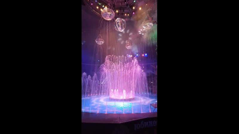 Водное шоу в Курском цирке