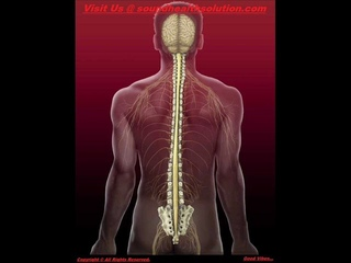 Spinal Column and Coccyx Pain Relief and Healing - Binaural + Isochronic Tones Sound Therapy