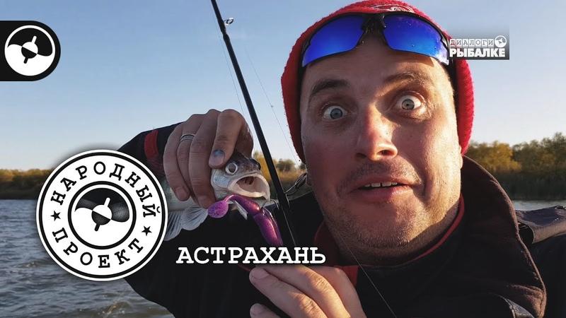 Судак и жерех. Джиг и поппер. Рыбалка в Астрахани | Народный проект