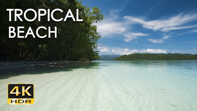 4K HDR Tropical Beach Gentle Ocean Wave Sounds Peaceful Wild Island Relaxing Nature Video