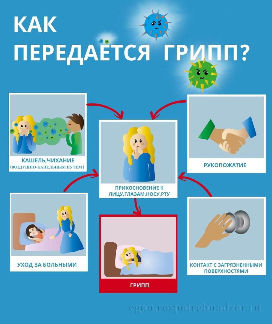 Меры профилактики гриппа., изображение №10
