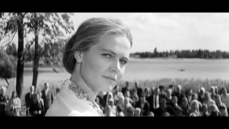 Лидия Майорова - Не будите, журавли, вдов России...