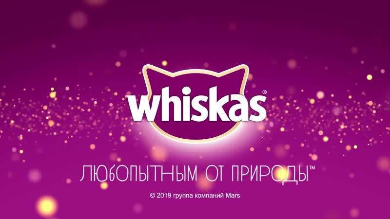Whiskas аппетитный микс