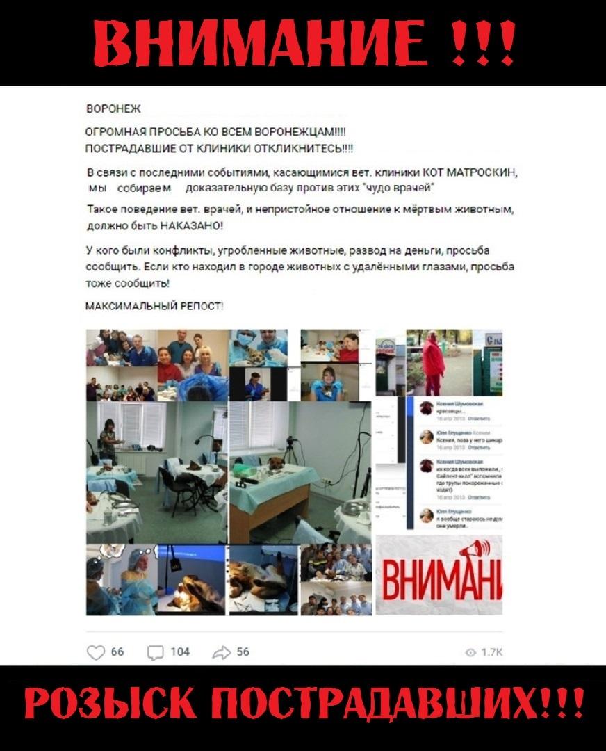 18+ ВЕТЕРИНАРА-ОФТАЛЬМОЛОГА Л.СОЛОМАХИНУ (г.ВОРОНЕЖ)— ОБХОДИТЬ СТОРОНОЙ!!!, изображение №15