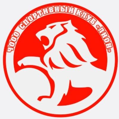 Спортивный клуб лион копейск