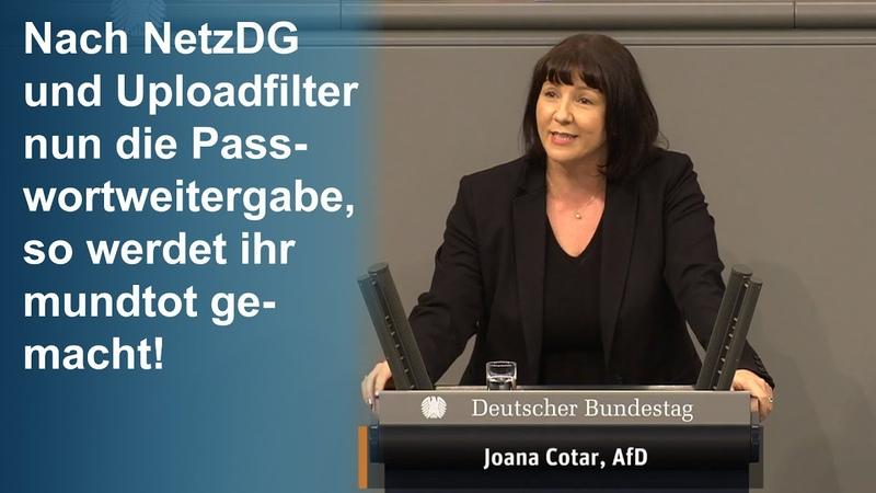 Joana Cotar AfD Rechtsstaat AD Privatsphäre AD Bürgerrechte AD