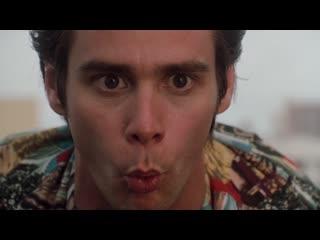 28 мая смотрите 2 части фильма Эйс Вентура на телеканале Кинохит.
