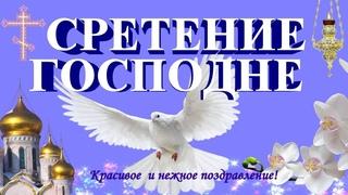 Сретение Господне видео поздравления с праздником видео открытка  поздравляю со сретением !