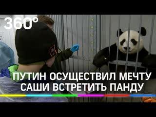 Путин, мальчик и обнимашки с пандой: президент подарил Саше встречу с медведем мечты