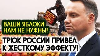 Глупость Евросоюза и Польши! Трюк России с Польскими яблоками привёл к жёсткому эффекту