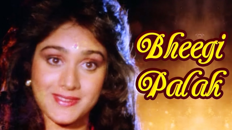 Bheegi Palak Badi Bahen 1993 Meenakshi Seshadri Raj Babbar Romantic Song