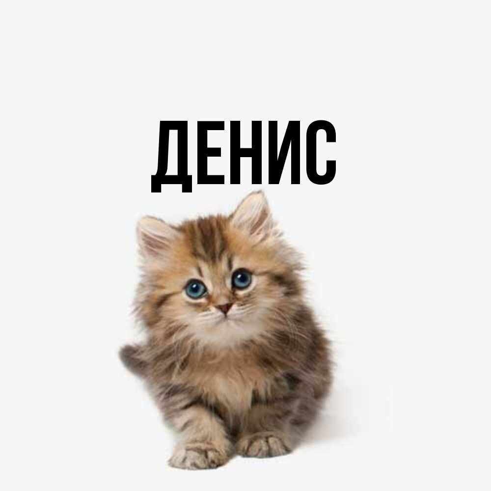 D-E-N-I-S, 32, Rubtsovsk