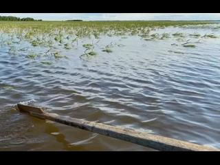 Речные разговоры с Зинаидой Шияновой. Вандиязы, Шурышкарский район, Ямал. Июль, 2021.
