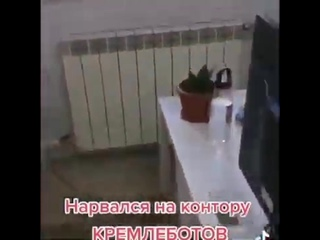 [Протест Навального] Вот они! Кремлеботы которые защищают власть за деньги! Пишут гадости в комментариях!