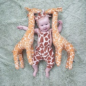 Жираф 🦒