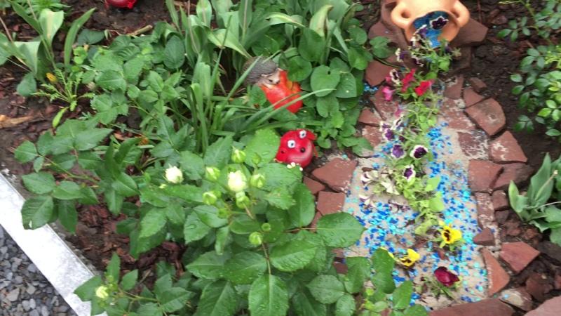 Маленький ручеек из цветов! Утро в саду.