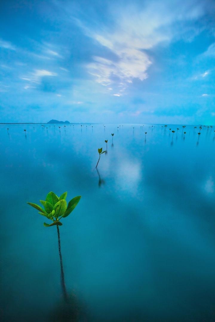 Пейзажная фотосъемка - целое приключение, изображение №1