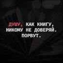 Александр Чигрин фотография #22