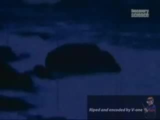 Discovery. Новый Розвелл. НЛО в бухте Шег.