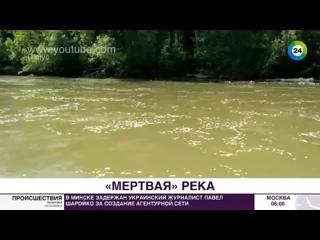 Мертвая вода. Как на Урале отравили реку, питавшую целый город...