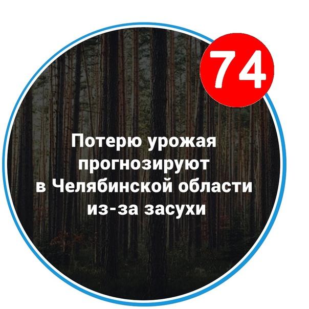 Потерю урожая прогнозируют в Челябинской области из-за засухи   Синоптики предупредили, что из-за засухи этим летом... [читать продолжение]
