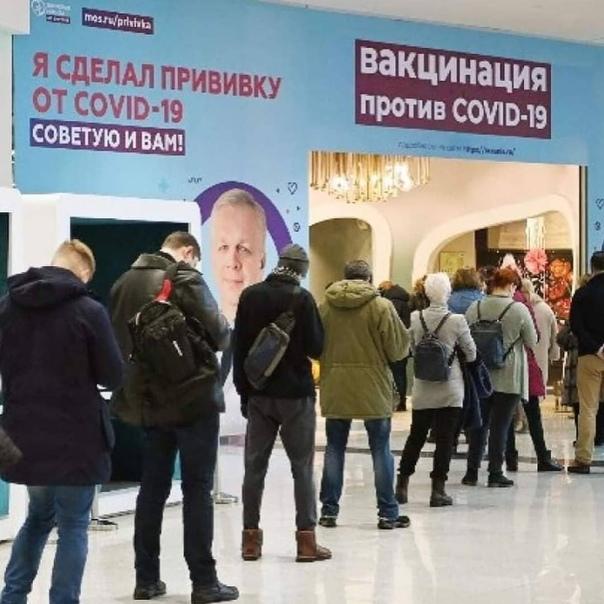 Россияне, которые сделали прививку от коронавируса...