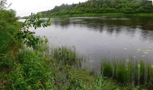 Парню, который изнасиловал и убил 16-летнюю девушку в Новополоцке, суд дал 20 лет колонии