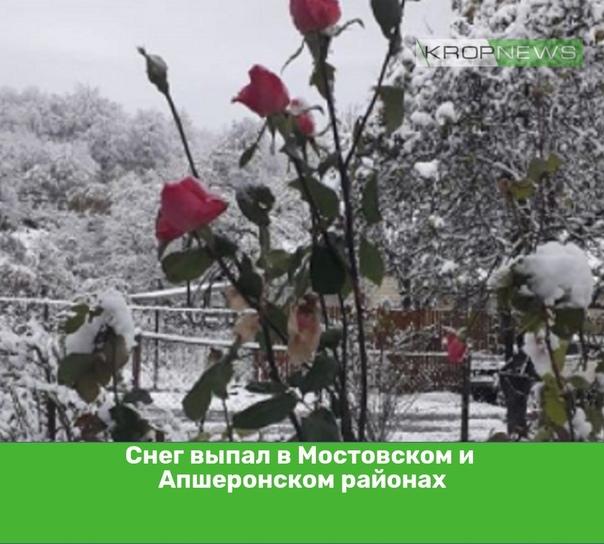 Снег выпал в Мостовском и Апшеронском районахВ но...