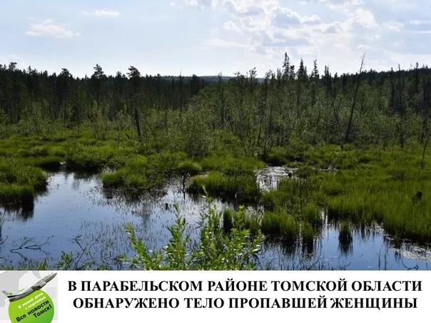В Парабельском районе Томской области на болоте об...