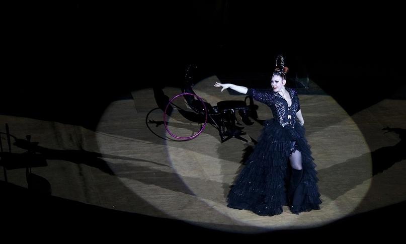 Режиссёр в цирке, изображение №1