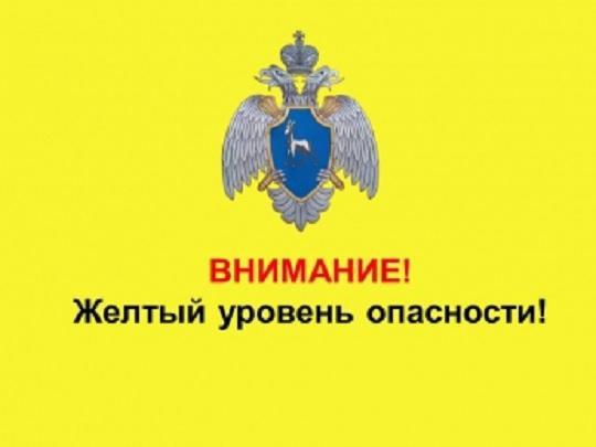 Возьмите под контроль детей: в Самарской области о...