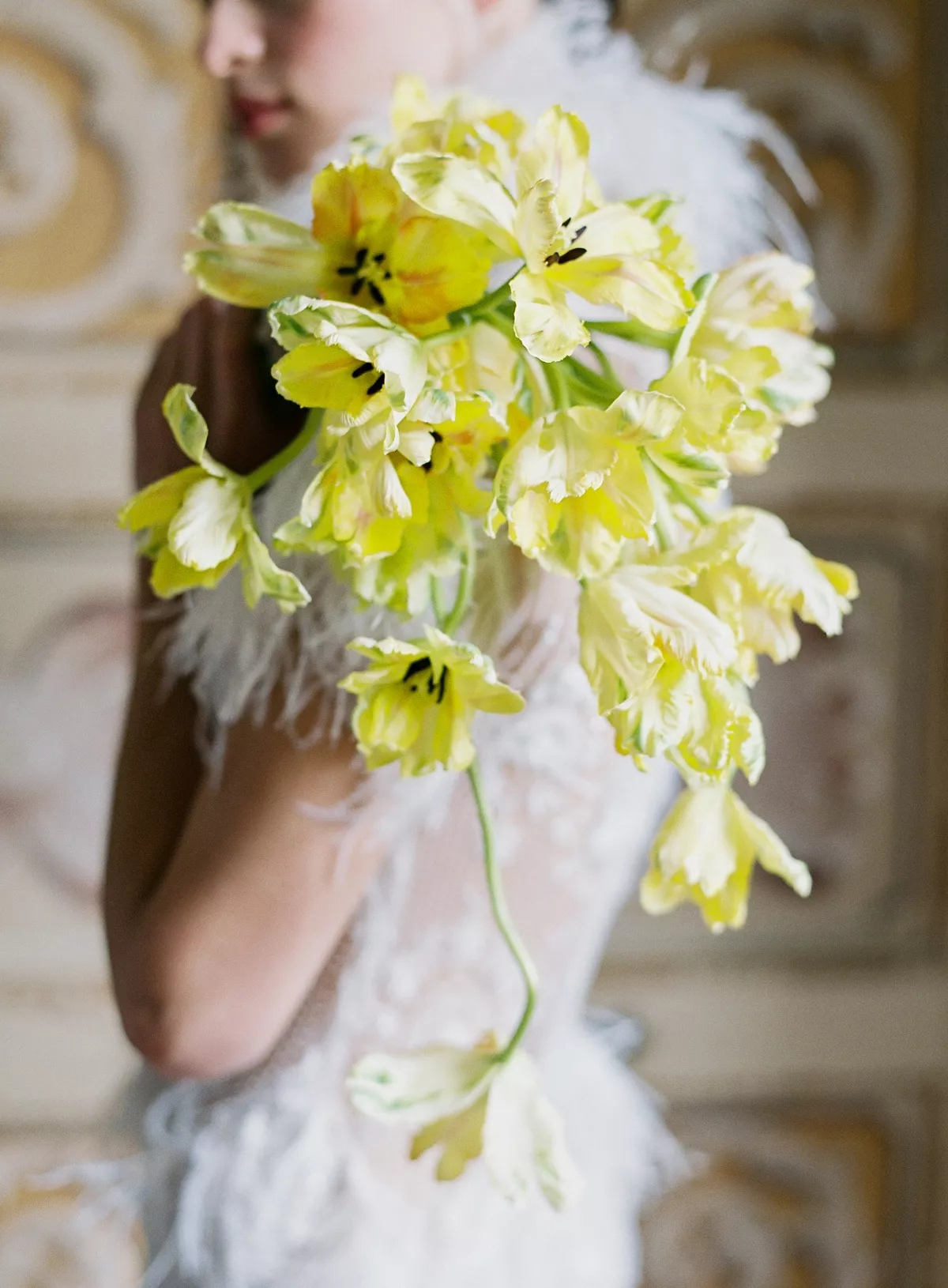 fYn4rLW2o g - Букет невесты из тюльпанов