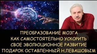 ✅ Эволюционное преобразование мозга от Николая Левашова - как самостоятельно ускорить свое развитие