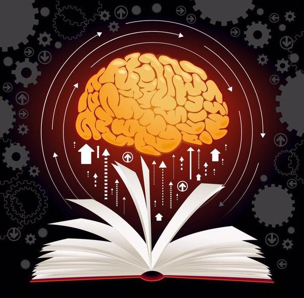 7 книг для развития вашего мозга. 1. Роджер Сайп. Развитие мозга Все мы можем быть раза в три лучше, чем сейчас, но как этого добиться Профессиональный коуч Роджер Сайп считает, что нам нужно