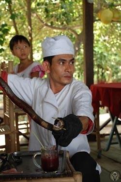 Индокитайский рецепт забвения прошлого Во Вьетнаме вкусно готовят, но о подробностях приготовлении пищи европейцам лучше не думатьВьетнам вытянут довольно узкой полосой вдоль морей Тихого океана