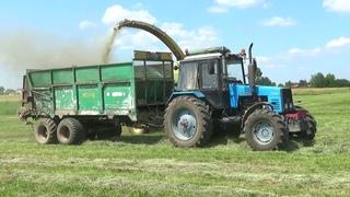 """Жара +36 в Беларуси: комбайн John Deere 6750 работает на уборке кормов в СПК """"Гигант"""""""