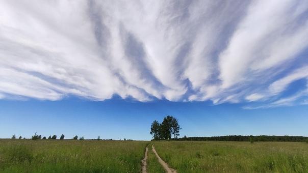 Фото артема кашканова