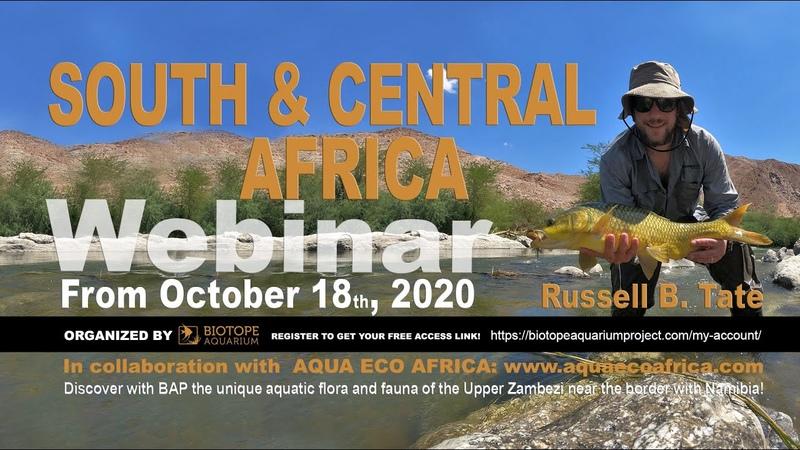 Южная и Центральная Африка. Вебинар Рассела Брайана Тейта. Часть 1 (18.10.2020) (Eng)