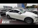 Первые Автошторки для Kia K5 - EscO Premium