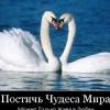 Катя Мазилкина