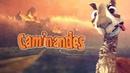 Каминандес Драма Caminandes Llama Drama Мультфильм Смотреть в HD