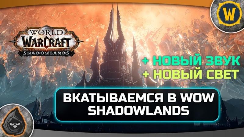 🔥World of Warcraft ● Вкатываемся в новый патч Shadowlands ● тестим новый мик звуковая свет