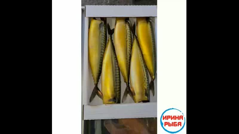 ИринаРыбаКопченая❗😁👍🐟 ТОЛЬКО У НАС В АЛЬМЕТЬЕВСКЕ❗Свежее поступление исамый большой ассортимент рыбы и морепродуктов более