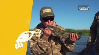"""Фестиваль телеканала """"Диалоги о рыбалке"""" в Астраханской области"""