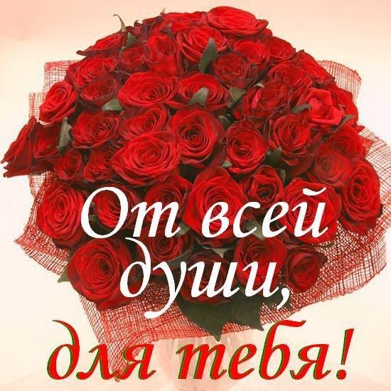 Картинка розы для юлички